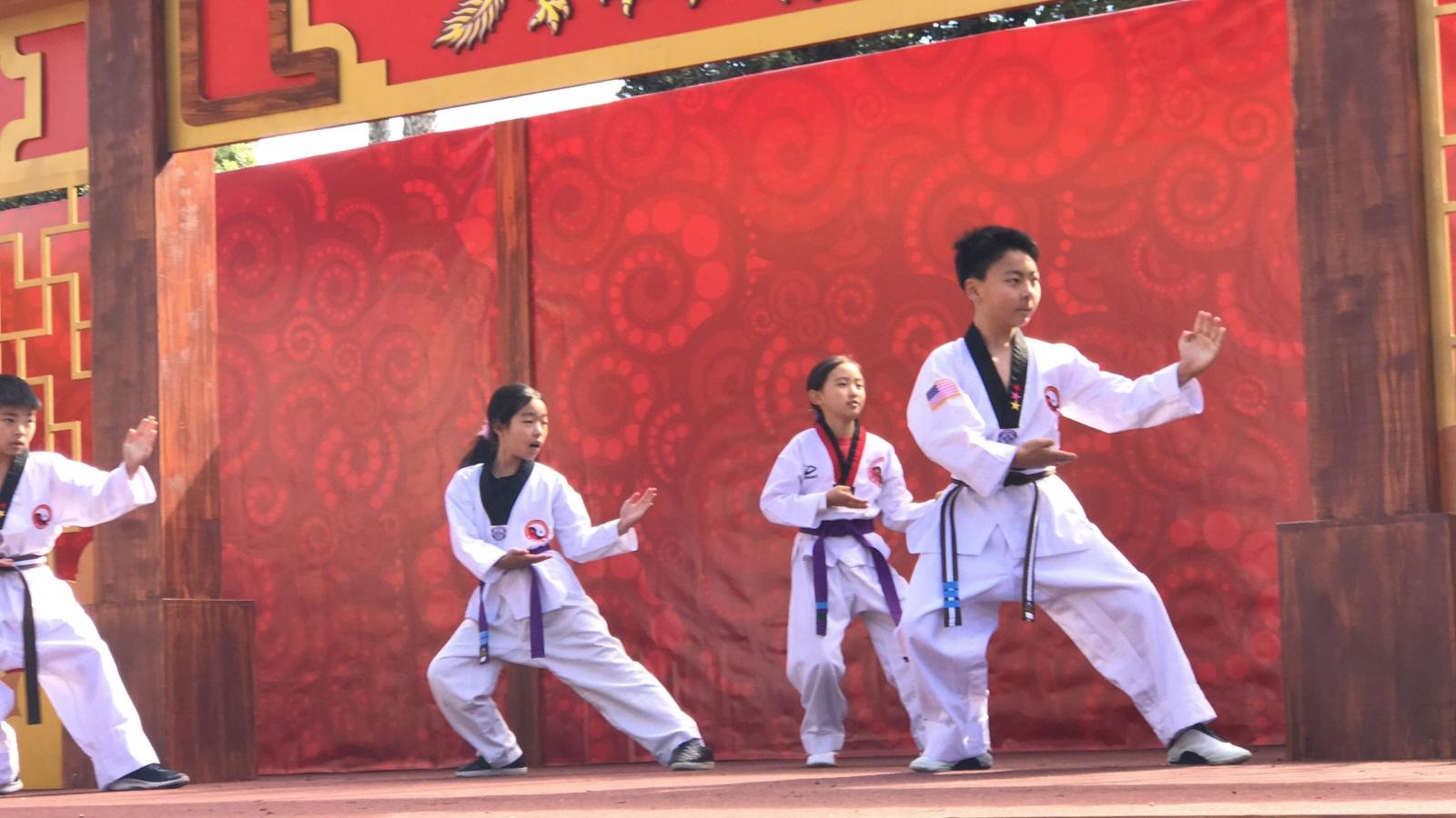 Taekwondo Academy